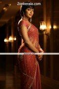 Rima Kallingal In Saree Still 3