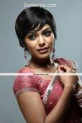 Rima Kallingal In Saree Still 4
