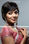 Rima Kallingal In Saree Still 5