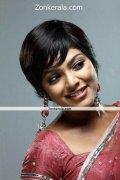 Rima Kallingal In Saree Still 6