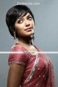 Rima Kallingal In Saree Still 7