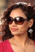 Rupa Manjari Stills 3265