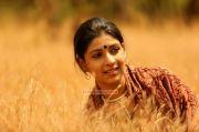 Actress Saanika Nambiar Stills 52