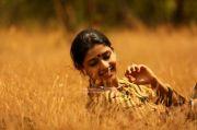 Malayalam Actress Saanika Nambiar 3743