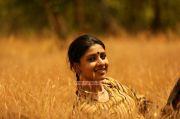 Malayalam Actress Saanika Nambiar Photos 2643