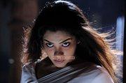 Actress Sandhya 3166