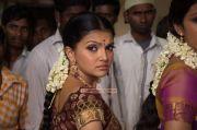 Saranya Mohan Photos 321