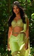 Pics Shruthi Haasan Malayalam Movie Actress 2503