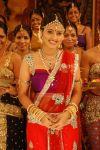 Malayalam Actress Sneha 9227