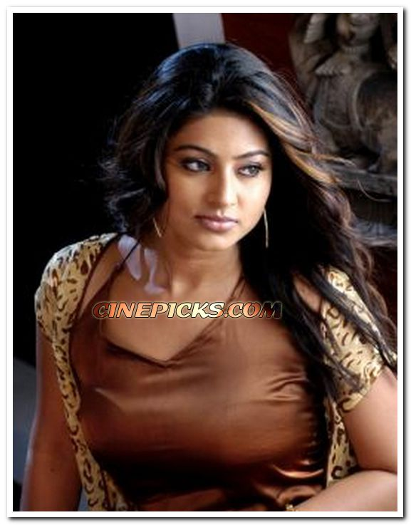 sneha still 12   malayalam actress sneha photos
