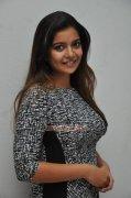 Swathi Reddy Actress Photo 809