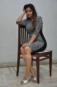 Swathi Reddy Movie Actress 2015 Still 7088