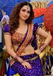 Malayalam Actress Tamanna 8722