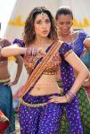 Malayalam Actress Tamanna 9556