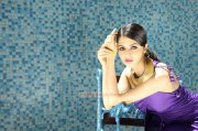 2015 Wallpaper Vedhika Cinema Actress 8430