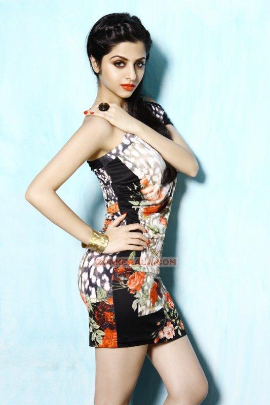 Cinema Actress Vedhika Recent Galleries 4853