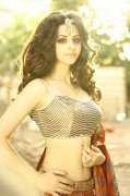Indian Actress Vedhika New Photo 6240