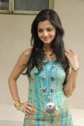 Vedhika South Actress Recent Pics 6419