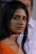Actress Vimala Raman 1