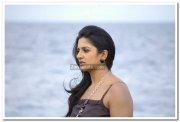 Actress Vimala Raman 31
