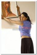 Actress Vimala Raman 36