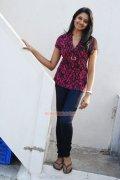 Actress Vimala Raman 8899