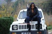 Actress Vimala Raman 9344