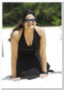 Actress Vimala Raman Photos 6