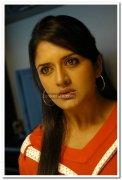 Actress Vimala Raman Pictures 25