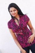 Malayalam Actress Vimala Raman 1061