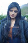 Malayalam Actress Vimala Raman 4933