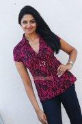 Malayalam Actress Vimala Raman 7095