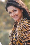 Malayalam Actress Vimala Raman Stills 4277
