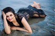 New Still Malayalam Heroine Vimala Raman 7382