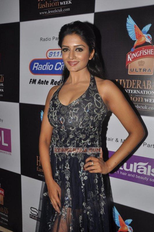 Photo Film Actress Vimala Raman 4929