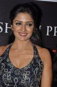 Recent Stills Vimala Raman Malayalam Actress 5611