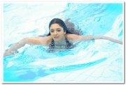 Vimala Raman Hot Stills 25