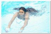 Vimala Raman Hot Stills 26