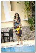 Vimala Raman Hot Stills 29