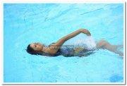 Vimala Raman Hot Stills 32