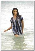 Vimala Raman Hot Stills 36