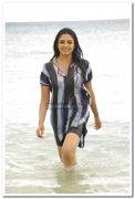 Vimala Raman Hot Stills 37