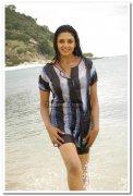 Vimala Raman Hot Stills 39
