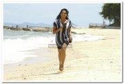 Vimala Raman Hot Stills 40