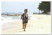 Vimala Raman Hot Stills 42
