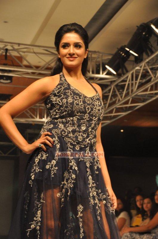 Vimala Raman Malayalam Actress Dec 2014 Gallery 6616