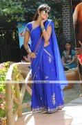 Vimala Raman New Photos 4