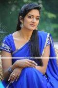 Vimala Raman New Stills 6