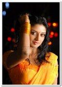 Vimala Raman Photos 11