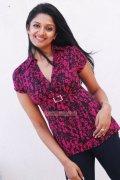 Vimala Raman Photos 4992